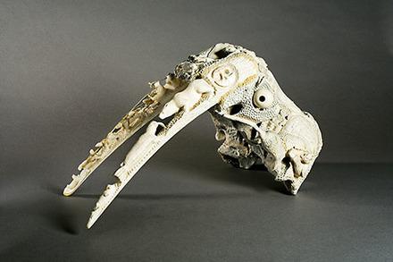 Crâne de morse sculpté