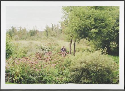 Échinacée, de la série Dix Images seules