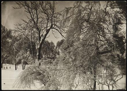 Paysage d'hiver, Québec