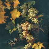 Nature morte aux raisins