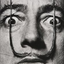 La moustache de Dalí