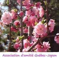 Association d'amitié Québec-Japon